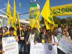 Fridays For Future - Giovani di Coldiretti Marche manifestano a Bologna