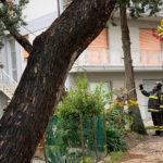 interventi dei vigili del Fuoco per allagamenti e rami caduti