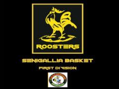 Roosters Senigallia, logo