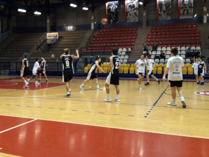 Basket 2000 Senigallia
