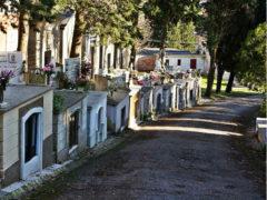 Cimitero di Senigallia