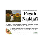 Necrologio Pegah Naddafi