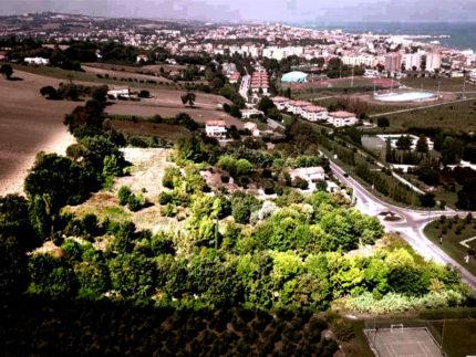 Boscomio a Senigallia