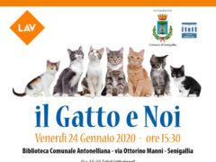 """Convegno a Senigallia: """"Il gatto e noi"""""""