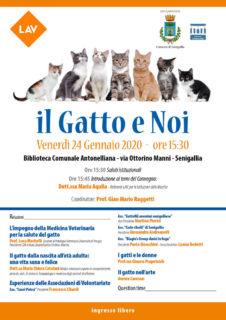 """Convegno a Senigallia: """"Il gatto e noi"""" - locandina"""