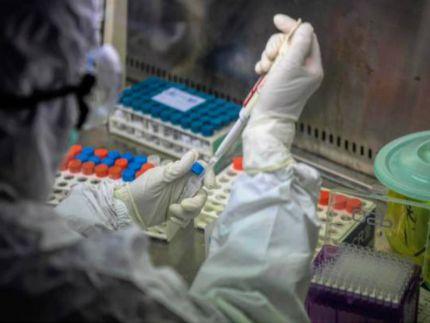 Coronavirus, primo positivo nelle Marche