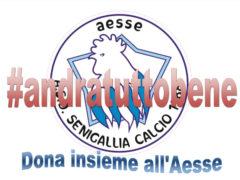ASD Senigallia Calcio
