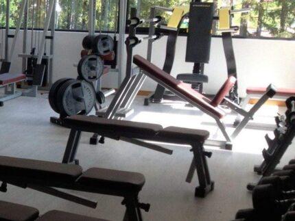Palestra, fitness, allenamenti