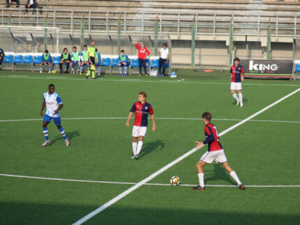 Mancini (Vigor)