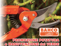 Promozione potatura e manutenzione del verde da RCR Agricoltura Giardinaggio