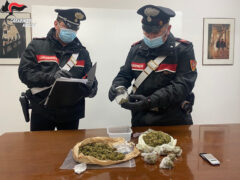 Sequestro marijuana