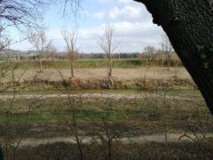 Visita guidata al fiume Misa