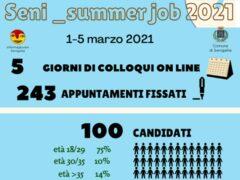 Seni_summer job 2021