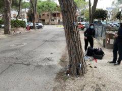 Prove di trazione sugli alberi di viale Anita Garibaldi