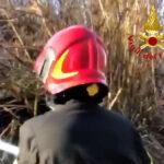 Incendio canneto Cesano