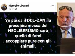 Il post del consigliere Liverani