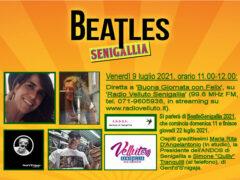 BeatleSenigallia