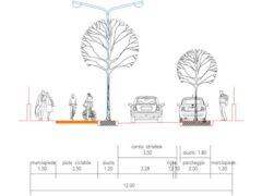 Progetto risanamento viale Anita Garibaldi