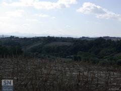 Le colline di Senigallia - Campi autunnali - Foto di Luca Ceccacci