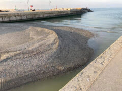 Isoletta di sabbia e detriti alla foce del Misa (situazione ottobre 2021)