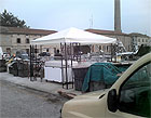 """Il """"mercato"""" del pesce al porto di Senigallia"""
