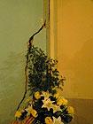 Senigallia, Chiesa delle Grazie - interno - crepa