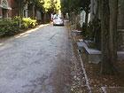 Automobili tra i viali del cimitero delle Grazie a Senigallia