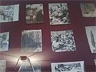 Mostra Fotografica di Riccardo Gambelli a Palazzo del Duca di Senigallia