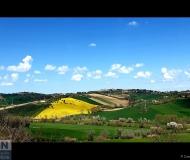 23/04/2021 - Le colline di Roncitelli e Scapezzano