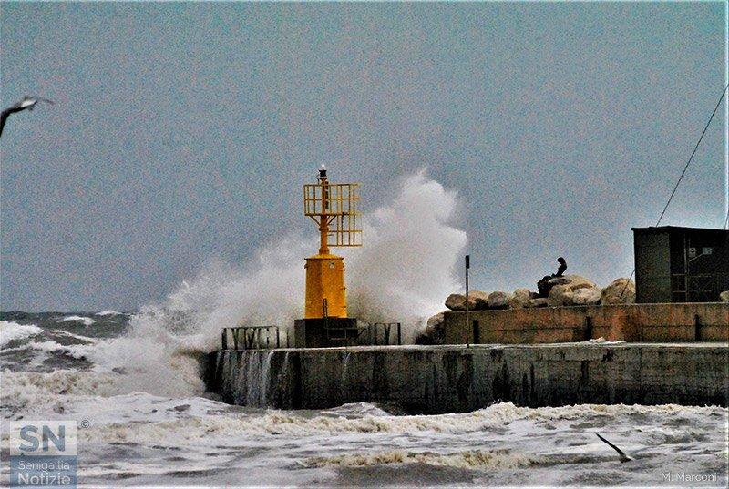 01/12/2020 - La potenza del mare