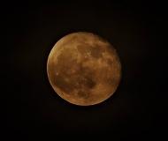 05/01/2021 - Luna rouge