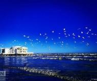 06/06/2020 - Volo nell'azzurro