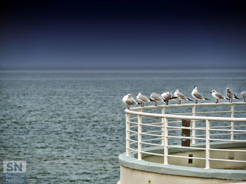 19/05/2021 - Vista a mare