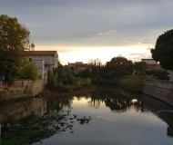 22/03/2021 - Da ponte Garibaldi