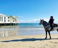 13/11/2020 - Un cavallo sul mare
