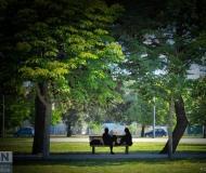 09/09/2020 - Coccole al parco