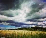 17/09/2020 - Cielo, bosco, campo