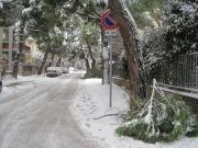 Anche in via Pescara rami spezzati