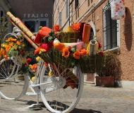 11/08/2016 - Bici, fiori e colori