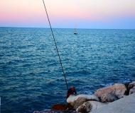 16/04/2017 - Pesca al porto
