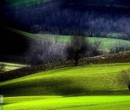 01/04/2018 - Le verdi colline