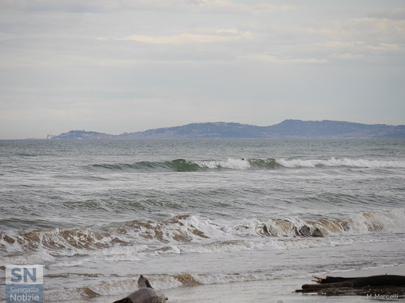 04/12/2019 - Ancona sull'onda