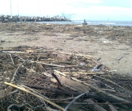 Spiaggia di velluto invasa dai detriti