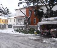 Neve a Senigallia: i disagi in città
