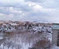 Neve a Senigallia: le foto dei lettori