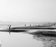 22/02/2016 - Avventori della bassa marea
