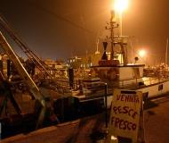 13/02/2017 - Vendita pesce fresco