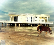25/02/2017 - Cavalcare sulla spiaggia