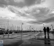 23/02/2019 - A spasso al porto