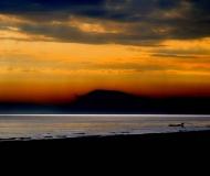 25/02/2019 - Paesaggio marino alle prime luci